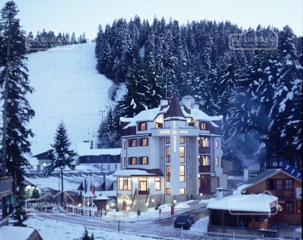 Alpin Hotel10