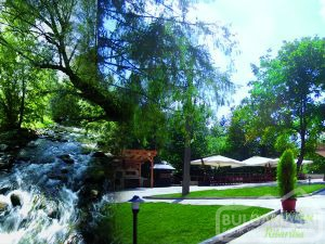 Green Village4