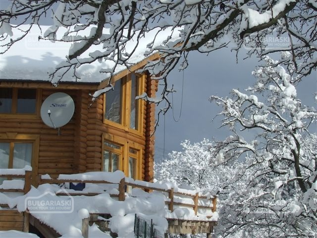 The Green Pine Chalet4