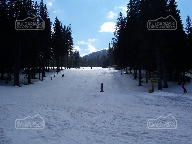 Kom ski resort12