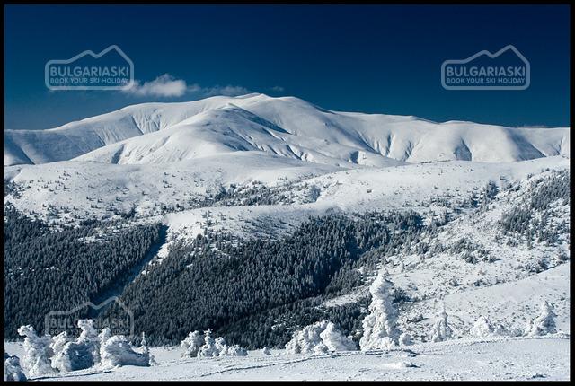 Osogovo Mountain1
