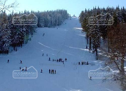 Osogovo Mountain11