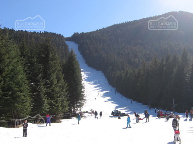 Osogovo Mountain12