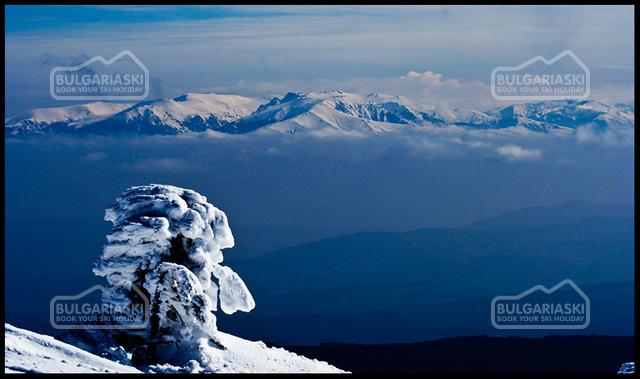 Osogovo Mountain3