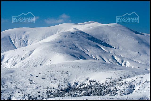 Osogovo Mountain4