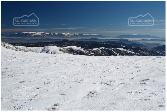 Osogovo Mountain10